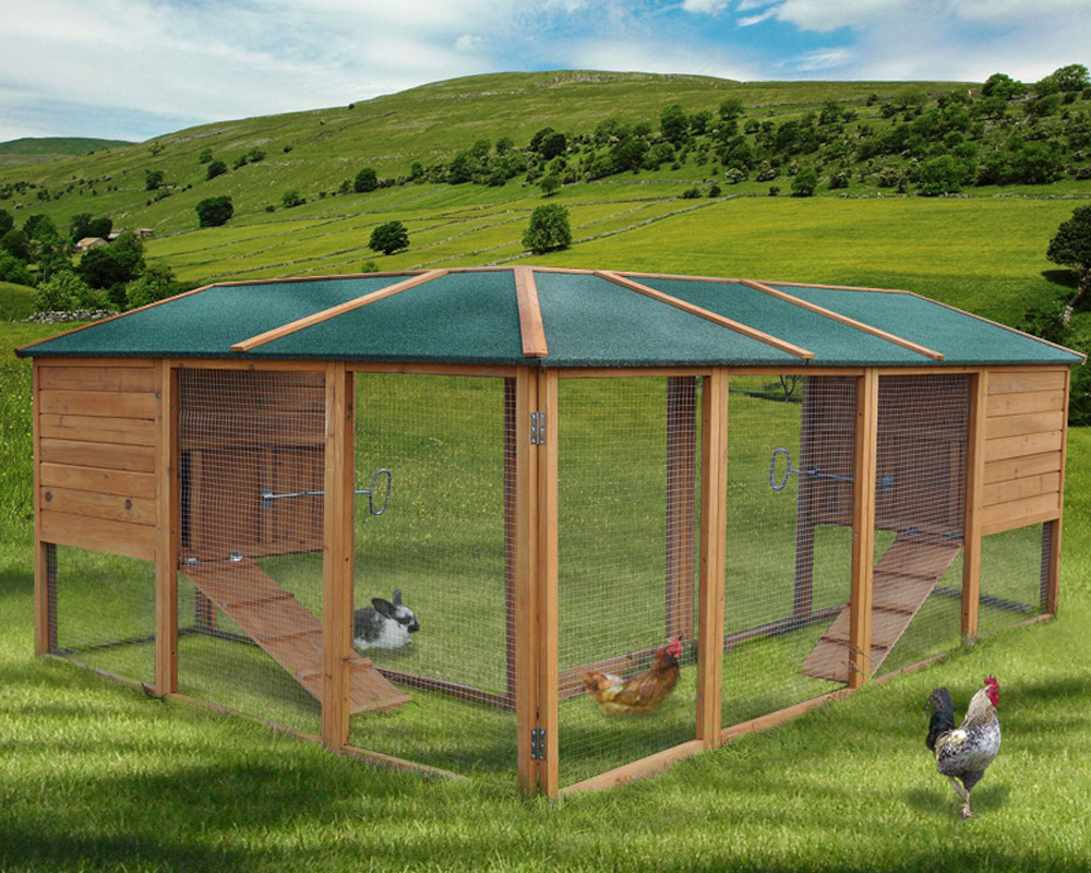 Chicken coop poultry hen house cage rabbit hutch 240x180 for Rabbit house images