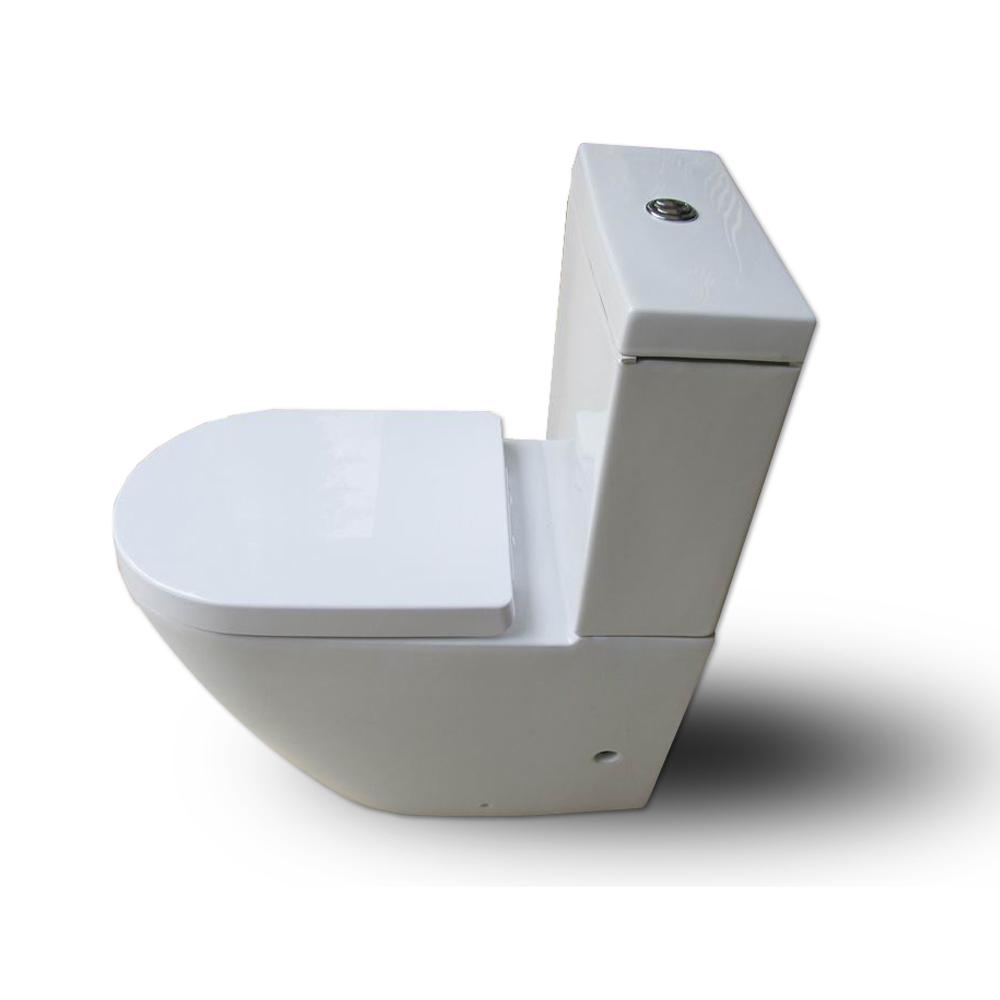 Toilet Wall Mount